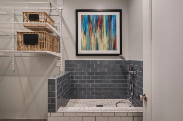 Noz Design: Dog Shower Tile